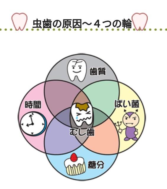 f:id:iwakiri-dc:20210211202822j:image