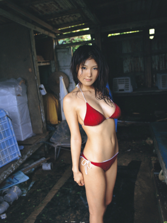 f:id:iwakumoto:20090425220327j:plain