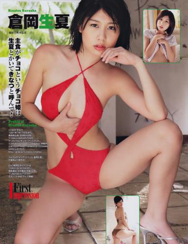 f:id:iwakumoto:20101117074750j:image