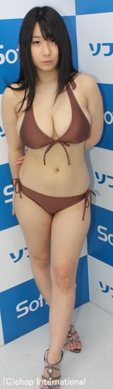 f:id:iwakumoto:20120519074404j:plain