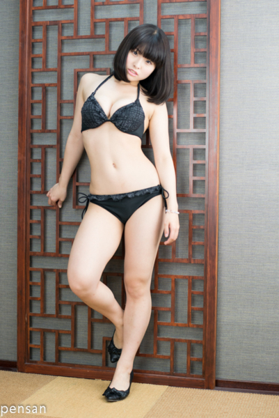 f:id:iwakumoto:20121216024500j:plain