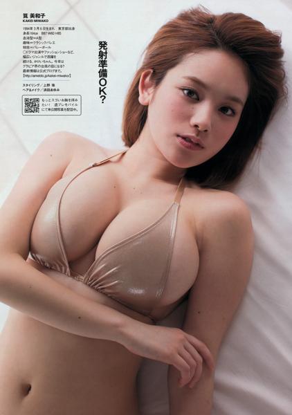 f:id:iwakumoto:20130401004820j:plain