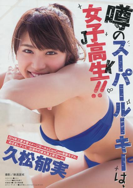 f:id:iwakumoto:20140319072721j:plain