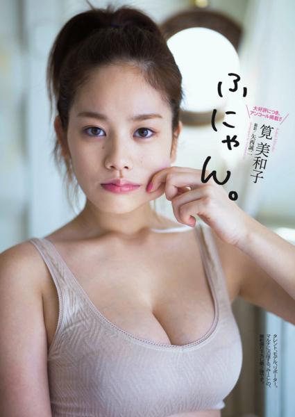 f:id:iwakumoto:20140403222551j:plain
