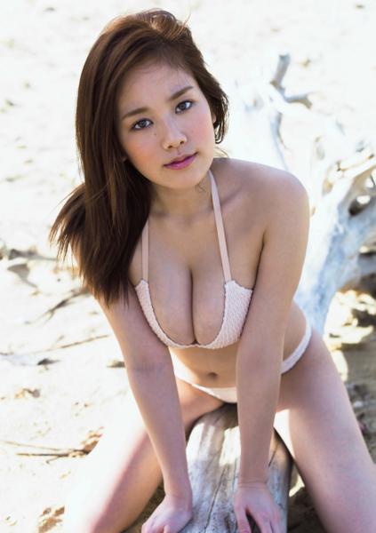 f:id:iwakumoto:20140403222554j:plain