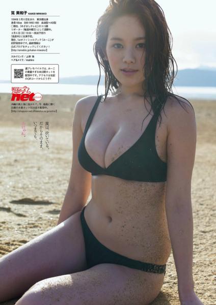 f:id:iwakumoto:20140403222555j:plain