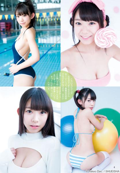 f:id:iwakumoto:20151227104901j:plain