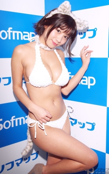 f:id:iwakumoto:20160130092452j:plain
