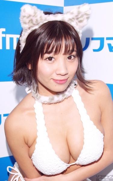 f:id:iwakumoto:20160130092457j:plain
