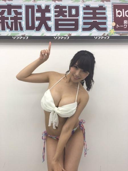 f:id:iwakumoto:20160731054854j:plain