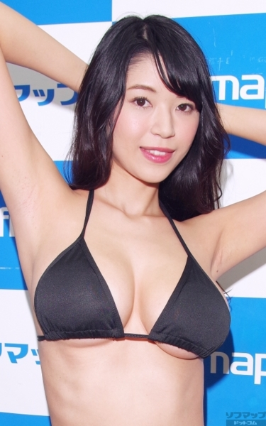 f:id:iwakumoto:20161113080241j:plain