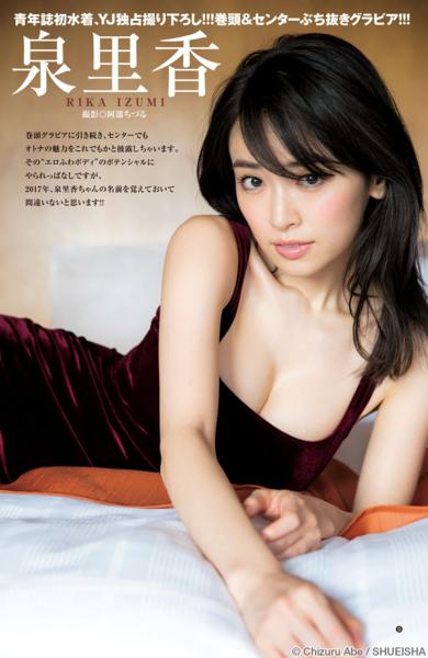 f:id:iwakumoto:20161202005420j:plain