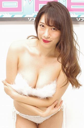 f:id:iwakumoto:20170505072527j:plain