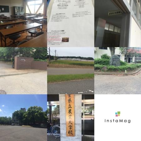 f:id:iwamo:20160531133603j:image