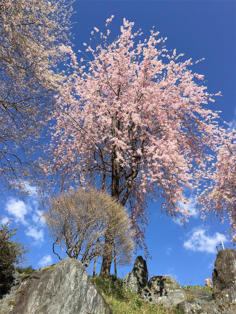 f:id:iwamoto_gaisou:20170428094413j:image