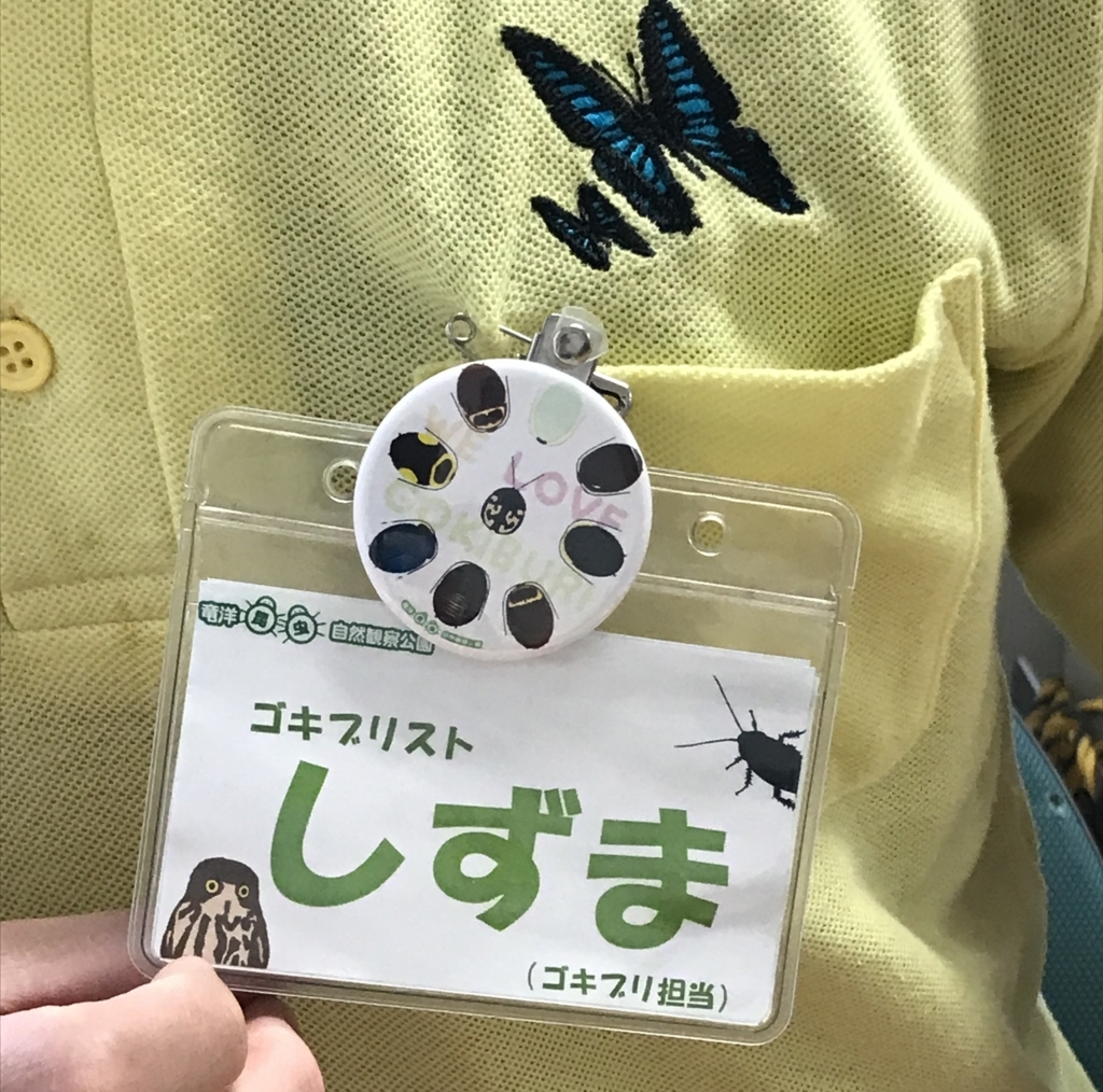 f:id:iwasakishoten:20180709152933j:plain