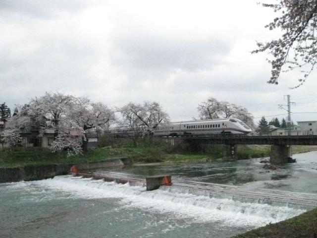 f:id:iwasan1go:20110504132123j:image