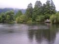 [由布院][湯布院]金鱗湖(きんりんこ) 2