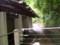 P5040137|音戯の郷 (おとぎの さと)|いりぐち みぎ
