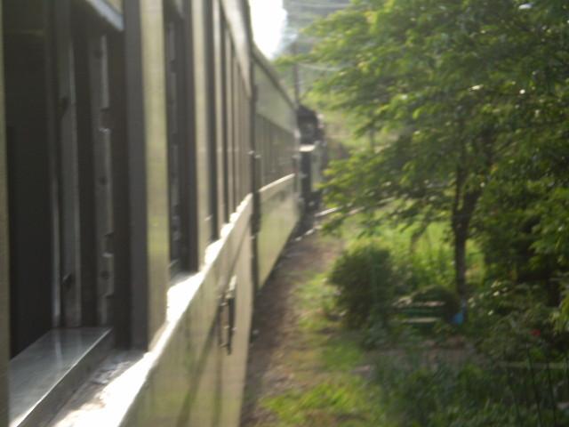 P5040162|SL急行の 車窓から 前方を みる|新金谷-金谷間