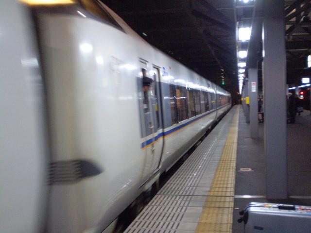 110115-39 福井に きた しらさぎ