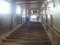 20140113 11:12 郡上八幡 こせんきょう 階段