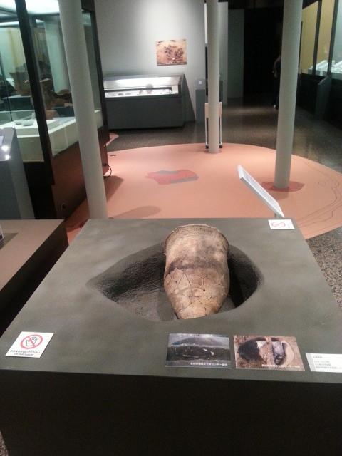 20141223_141107 名古屋市牛牧遺跡土器棺墓再現
