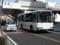 20150305_123138 あんじょうえきまえ - みぎまわり循環線バス