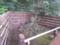 20150509_102550 竹採公園 - 竹採塚