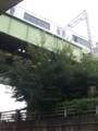 20150816_101522 秋葉地下道 - 常滑線あがり電車