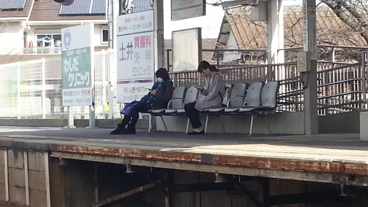 20151129_111521 碧海古井 - 西尾いきふつう