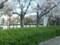 20160405_080825 みぎまわり循環線バス - あんじょう公園-市役所・文化セ