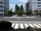 20160705_125256 1号線からみた中央緑道