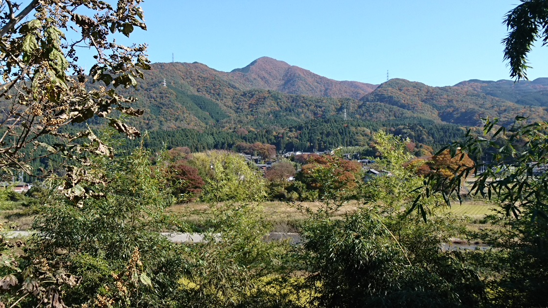 2016.11.16 上石津 (31) 宮
