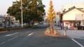 2016.12.9 豊橋 (13) けやきどおり 800-450