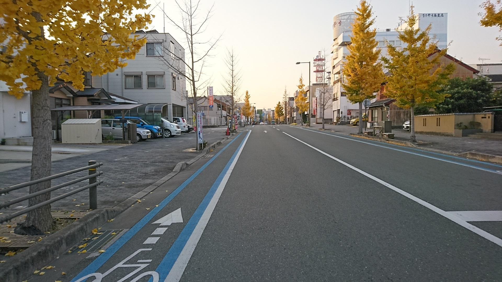 2016.12.9 豊橋 (20) けやきどおりとまじわるとおり 1920-1080