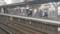 2016.12.26 名鉄 (10) 矢作橋 - 豊橋いき特急(通過)1920-1080