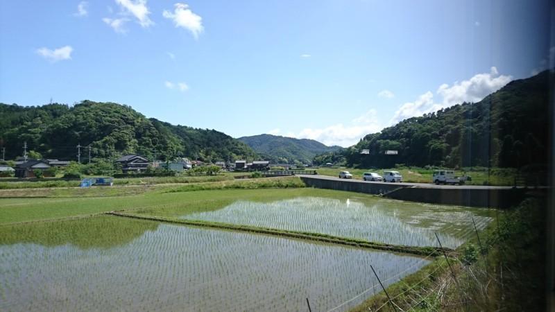 2017.6.4 天橋立 (28) 丹后のうみ(はしだて2号) - たんぼ 1920-1080