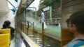 2017.8.18 ふね (36) 第二寝屋川 - 大阪城港 800-450