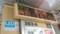 2017.10.12 東京 (121) 下高井戸いきふつう - 「つぎは宮の坂」 800-450