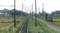 2017.11.17 八日市 (28) 貴生川いきふつう - 河辺の森-八日市間 800-440