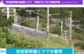 秋田新幹線でくま(テレ朝News - 2017.9.16 (3)