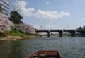 2018.3.31 岡崎ふなあそび (6) のぼり - 明代橋 1180-810