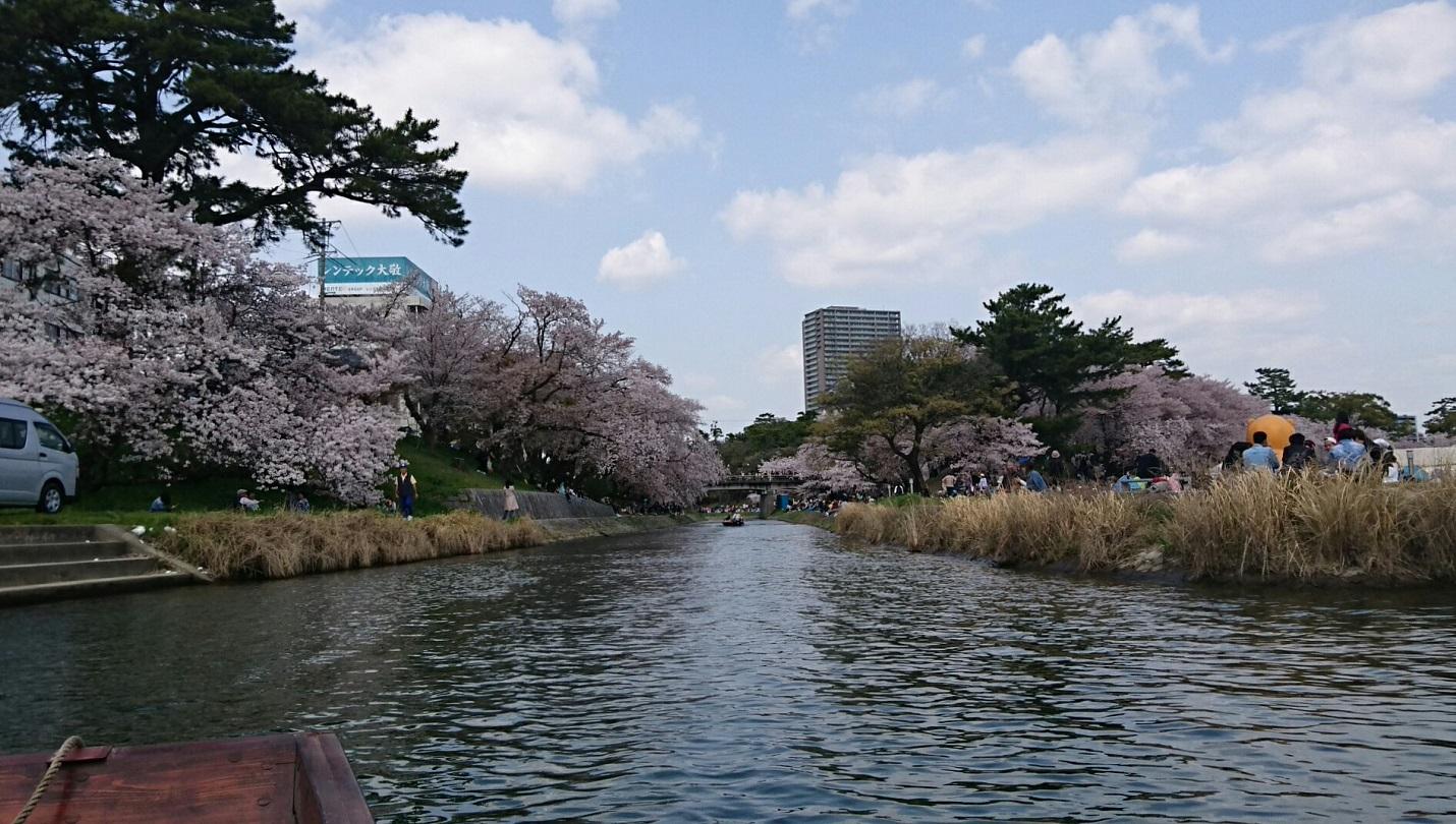 2018.3.31 岡崎ふなあそび (32) 伊賀川のぼり 1430-810