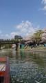 2018.3.31 岡崎ふなあそび (37) 伊賀川のぼり - 竹千代橋 1040-1850
