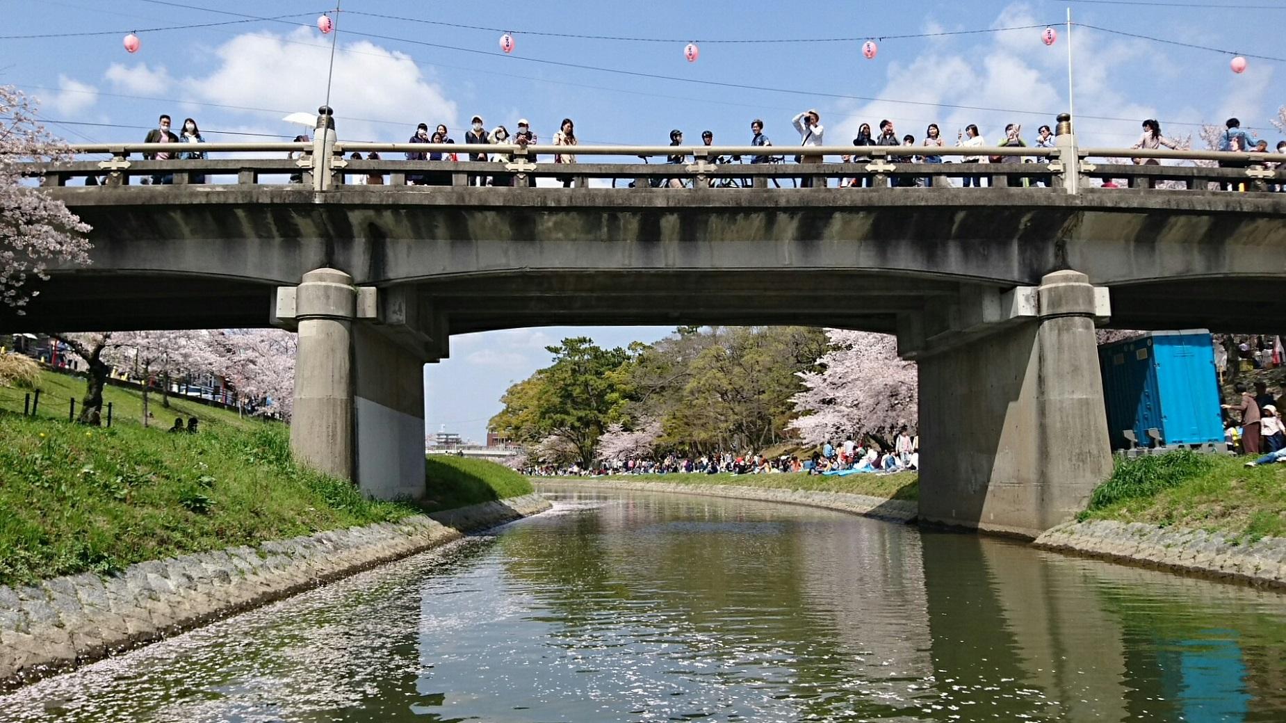 2018.3.31 岡崎ふなあそび (38) 伊賀川のぼり - 竹千代橋 1850-1040