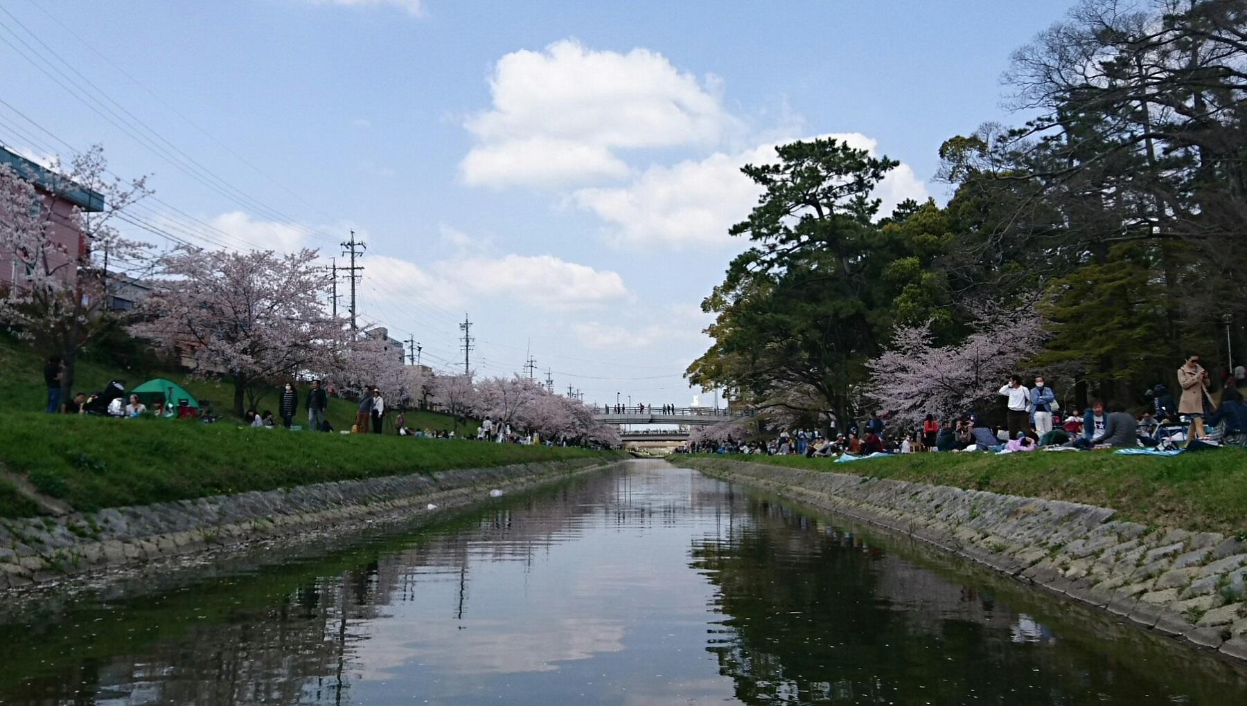 2018.3.31 岡崎ふなあそび (40) 伊賀川のぼり 1800-1020