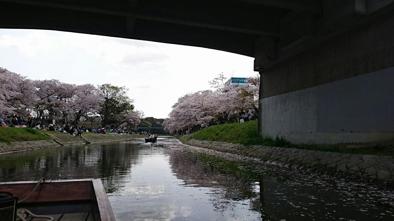 2018.3.31 岡崎ふなあそび (43) 伊賀川くだり - 竹千代橋 1440-810