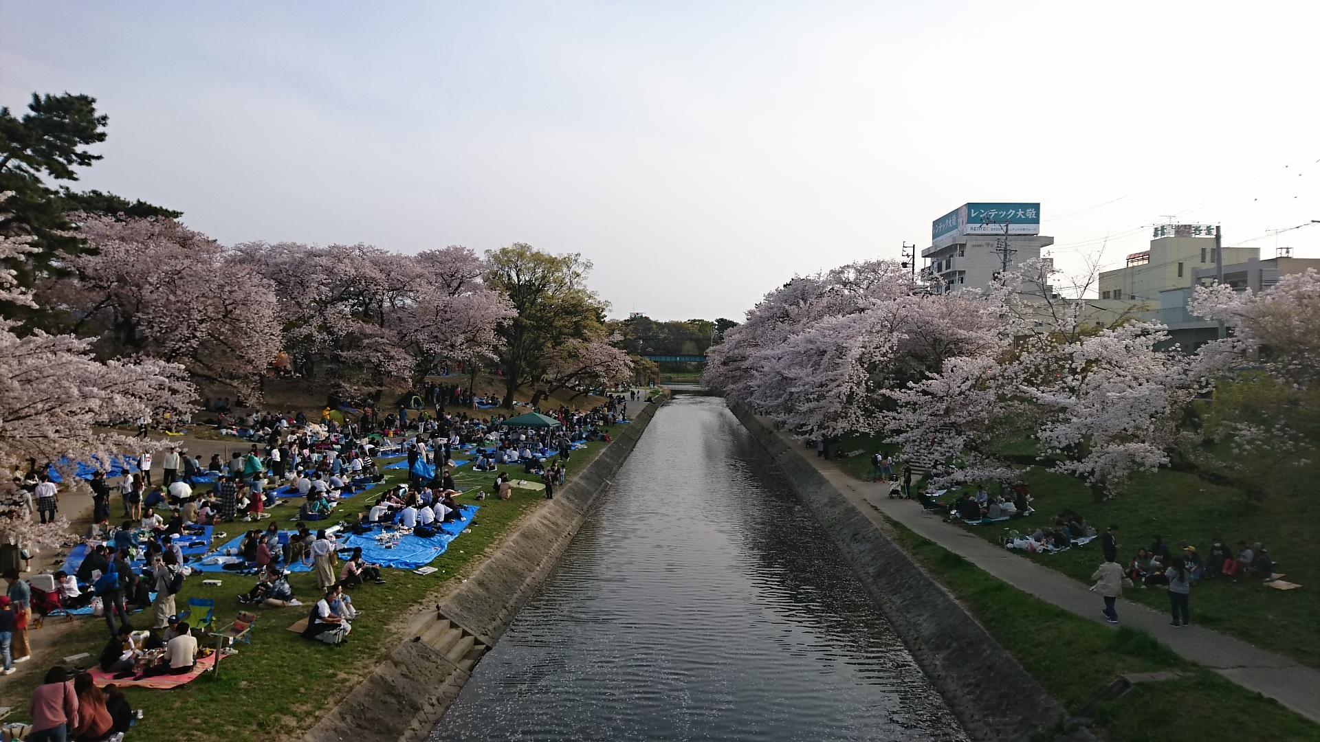 2018.4.1 東岡崎 (26) 竹千代橋 - 伊賀川 1920-1080