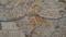 2018.5.4 岐阜市歴史博物館 (3) 美濃のくにえず - 御嵩のへん 1920-1080